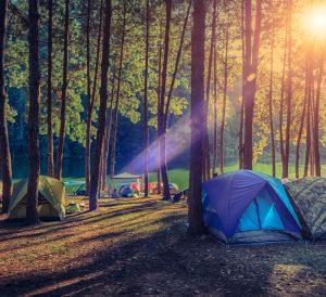 Gökçetepe Kamp Turu