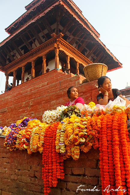 Durbar Meydanı Çiçekçi