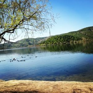 Eymir Gölü
