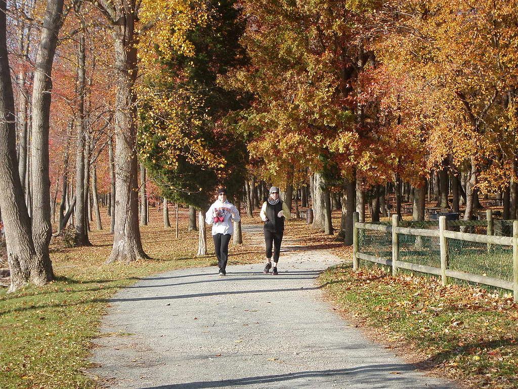 Açık alanda koşmak son derece sağlıklıdır. | Fotoğraf: Virginia State Parks staff (AlbertHerring)