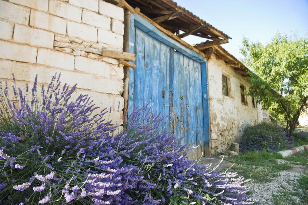 kuyucak-köyü-keçiborlu3-1024x684
