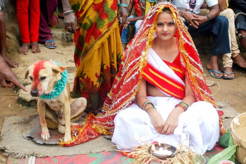 Köpekle Evlendirme