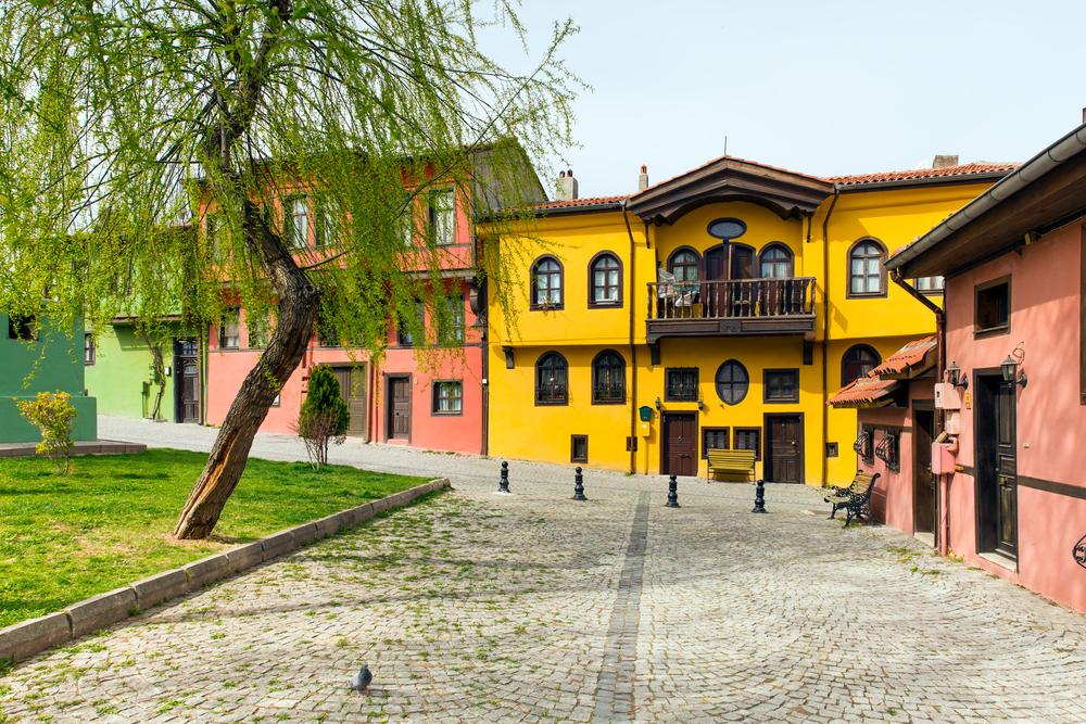Eskişehir'in Evleri