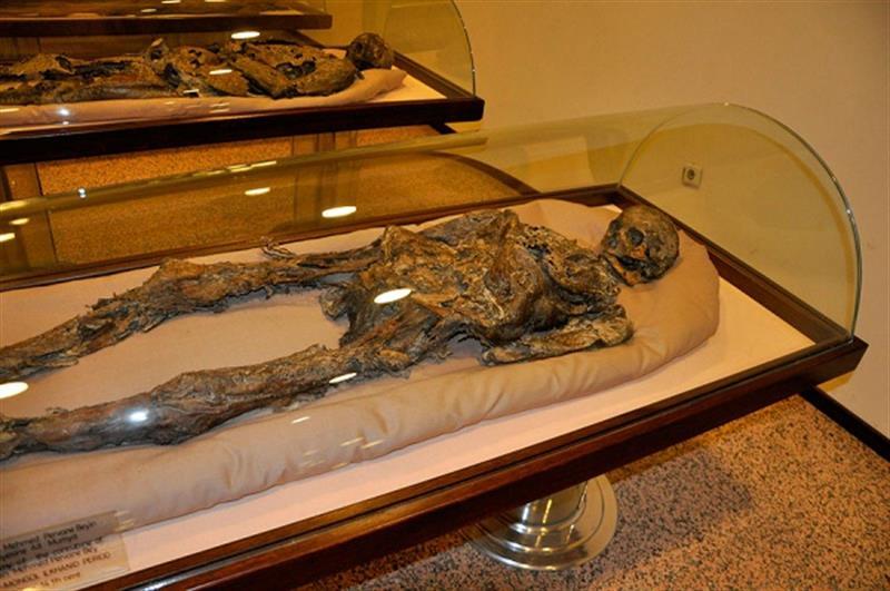 Amasya Arkeoloji ve Mumya Müzesi